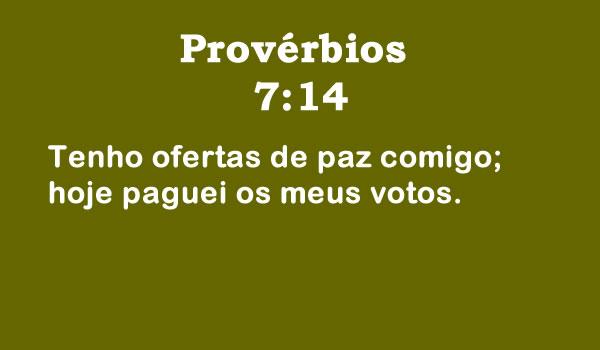 Provérbios 7:14